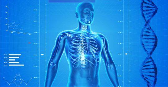 Światowy Dzień Osteoporozy